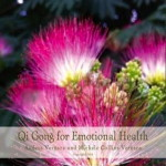 qi gong for emotional health MP3