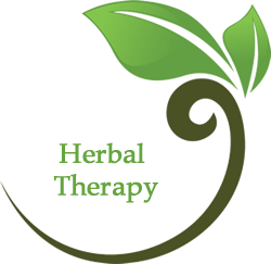 Herbal Therapy Winston Salem